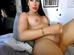 Busty colombian shemale jerking off her rock-hard cock